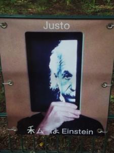 Foto scattata nei pressi della casa di Einstein