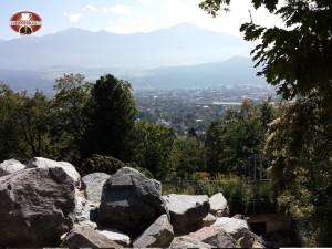 Vista dall´Alpenzoo di Innsbruck!
